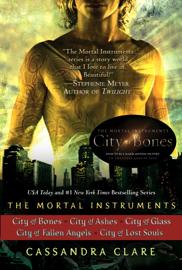 Cassandra Clare: The Mortal Instruments Series (5 books) book