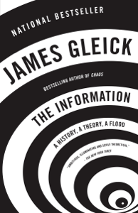 The Information ebook
