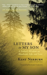 Letters to My Son Book Cover