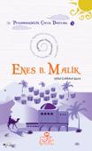 Enes Bin Malik (r.a.)