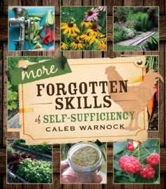 More Forgotten Skills of Self-Sufficiency book