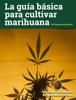 Brais - La guía básica para cultivar marihuana grafismos