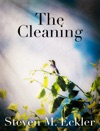 The Cleaning