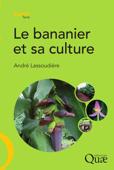 Le bananier et sa culture
