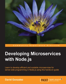 Developing Microservices With Node Js