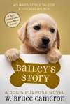 Baileys Story