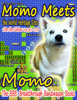 Momo - Momo Meets the World Heritage Sites artwork