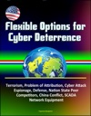 Flexible Options For Cyber Deterrence Terrorism Problem Of Attribution Cyber Attack Espionage Defense Nation State Peer Competitors China Conflict SCADA Network Equipment