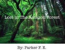 Lost In The Amazon Forest