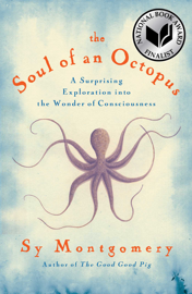 The Soul of an Octopus book