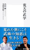 荒天の武学 Book Cover