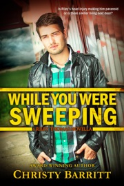 While You Were Sweeping PDF Download