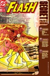 The Flash Secret Files 1997- 3