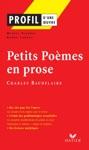 Profil - Baudelaire  Petits Pomes En Prose