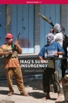 Iraqs Sunni Insurgency
