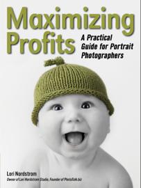 Maximizing Profits book