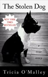 The Stolen Dog book