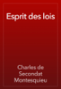 Charles de Secondat Montesquieu - Esprit des lois artwork