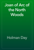 Holman Day - Joan of Arc of the North Woods artwork