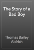 Thomas Bailey Aldrich - The Story of a Bad Boy artwork