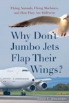 Why Dont Jumbo Jets Flap Their Wings