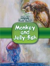 Monkey And Jelly-fish