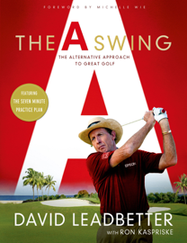 The A Swing book