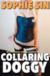Collaring Doggy MF Erotica Humor Role Play Dog-Master Stranger