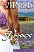 Runaway (Safe Havens 2)