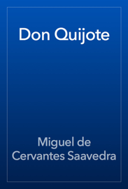 Don Quijote book