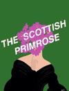 The Scottish Primrose