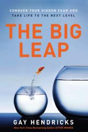 The Big Leap book