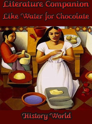 Literature Companion: Like Water for Chocolate image