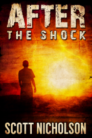 After: The Shock book