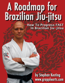 A Roadmap for BJJ book