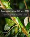 Panasonic Lumix GX7 And GM1
