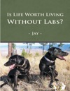 Is Life Worth Living Without Labs