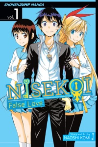 Nisekoi: False Love, Vol. 1 Book Cover