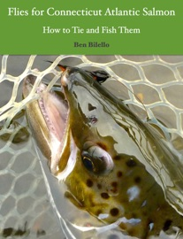 Flies For Connecticut Atlantic Salmon