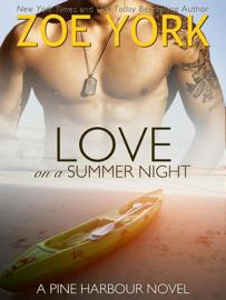 Love on a Summer Night book summary