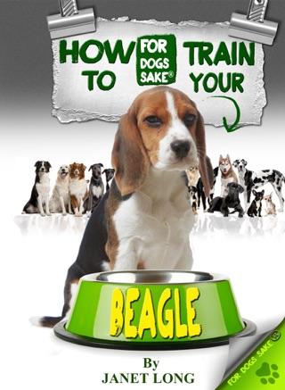 The Beagle Old Age Care Guide 7+