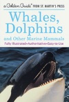 Whales Dolphins And Other Marine Mammals