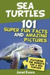 Sea Turtles  101 Super Fun Facts And Amazing Pictures Featuring The Worlds Top 6 Sea Turtles