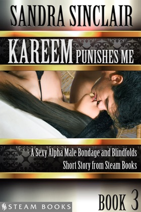 Kareem Punishes Me - A Sexy Alpha Male Bondage and Blindfolds Short Story from Steam Books image