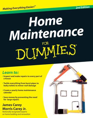 Home Maintenance For Dummies - James Carey & Morris Carey book
