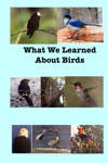 What We Learned About Birds