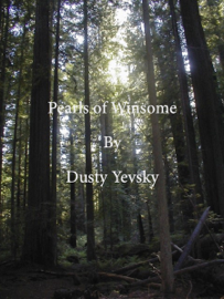 Pearls of Winsome book