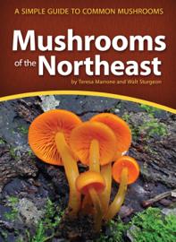 Mushrooms of the Northeast book