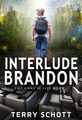 Interlude-Brandon - Terry Schott book
