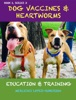 Dog Vaccines & Heartworms